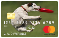 credit card with dog